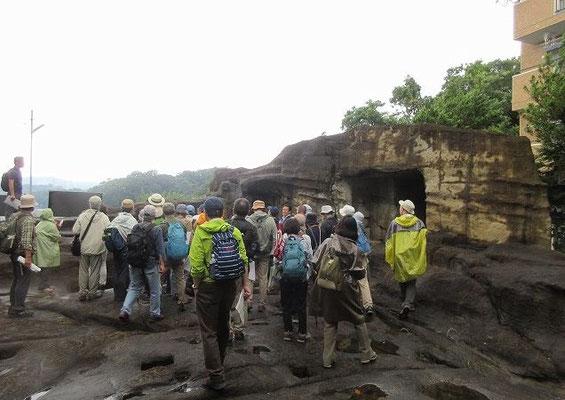 上行寺東遺跡  源頼朝と文覚僧正が初めて造営?した寺院跡。  上行寺の東側の山一帯は引越(ひっこし)の地名で呼ばれています。昭和59年秋、ここから中世のやぐらの大群集が発見されました。引越のやぐら群とも呼ばれています。  高さ30メートルの丘陵に上段、中段の二つの平場と下部崖面から構成されていて、43のやぐら、6基の建物跡、400ヶの五輪塔、200体にのぼる人骨が出土しました。やぐらの岸壁に刻みだされた阿弥陀如来の背後は西方を向いていて、彼岸の日に来迎を拝む意味があったと思われます。