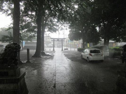 西蓮寺の手前の神社で雨宿り