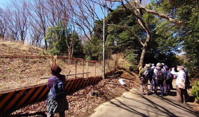 八坂神社に通ずる道を眺める。