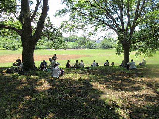 諏訪南公園で昼食  正面に丸山が見えます。