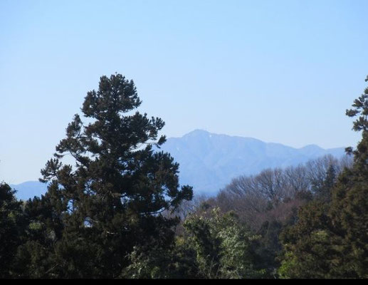 正山寺の裏山から見た「大山」