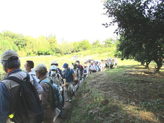 古沢都古緑地(ふるさわつとりょくち)   東京都と神奈川県の境界へ。
