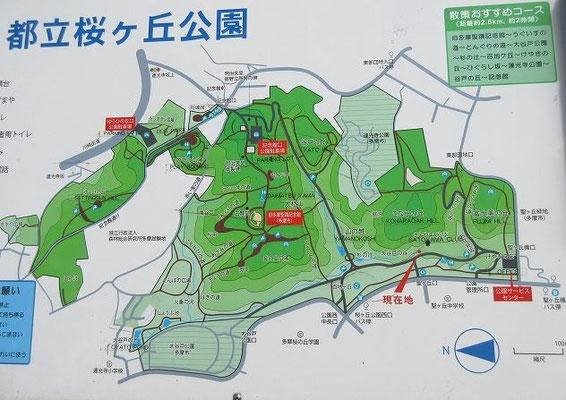 都立桜ヶ丘公園  丘陵公園だけに、地形は高低差数10mと起伏に富んでいます。公園の中ほどには、旧多摩聖蹟記念館(多摩市管理)があります。