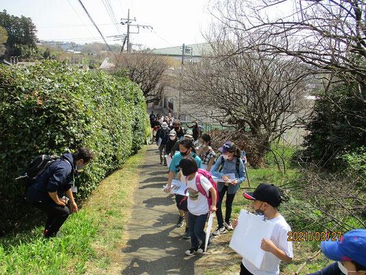 諏訪神社へ向かいます   大山、蛭が岳、富士山、少しかすんでいましたが見えました。