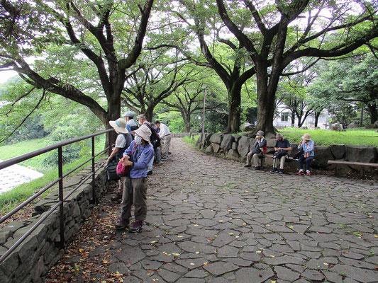 丘の上広場で休憩   ニイニイゼミの声が聞こえました。   ニイニイゼミの鳴き声を聞こえてくると、1週間から10日の内に梅雨は明けるとも。