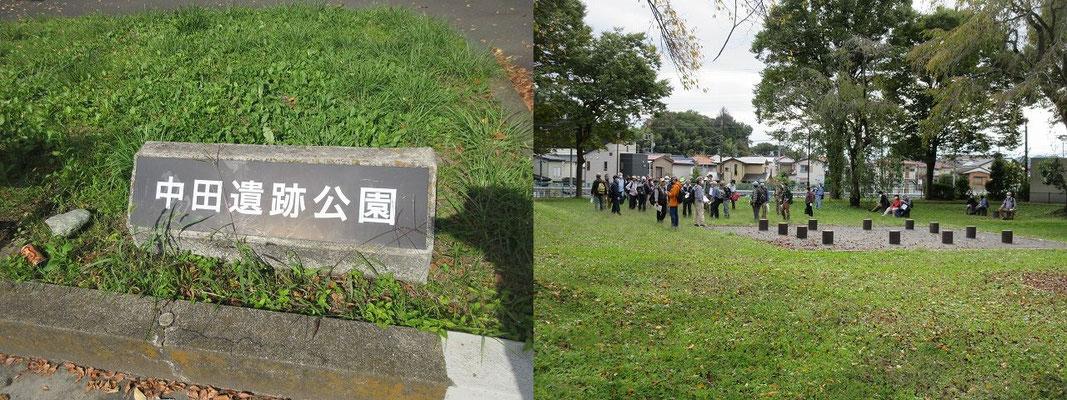 中田遺跡公園で昼食(12:30~13:00)   都営中野団地の造成に伴い、1966年(昭和41)から翌年にかけて発掘調査されました。    縄文時代から平安時代に至る、当時としては非常に大規模な集落遺跡として注目を集め、昭和45年に一部が市の史跡に指定され、公園として整備されました。