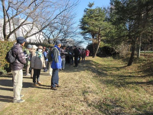 多摩よこやまの道に平行して残る山道。 かつて京都と東北地方(奥州)を結んだ奥州古道の痕跡(奥州古道常盤ルート)。