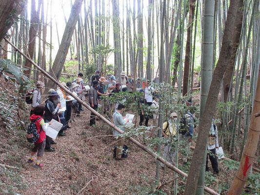 関屋城砦  小野路の宿の裏手の山は古くからの鎌倉古道の関所跡や砦跡の痕跡や二重の空濠跡・鎌倉古道の跡が残されています。中世の交通の要衡になっていたと推定されます。