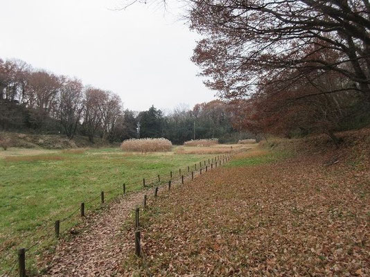 推定・古代東海道(人工的くぼ地)と右側に鎌倉古道。