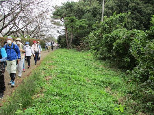 多摩よこやまの道に平行して残る山道    かつて京都と東北地方(奥州)を結んでいた奥州古道の痕跡。(奥州古道常盤ルート)