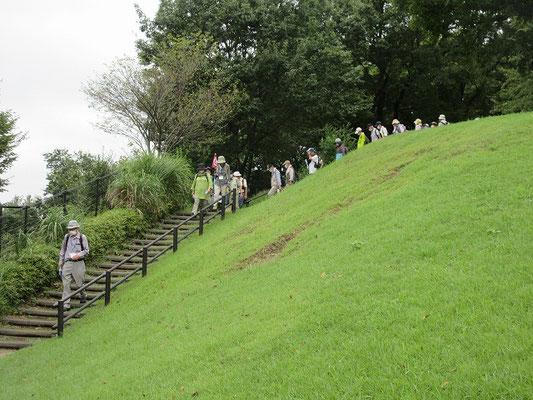 みはらし緑地     稲城市若葉台にある市立の公園、多摩市との境界線に接しています。  東側は稲城市の若葉台地区が眺められ、西側は多摩市が眺められます。