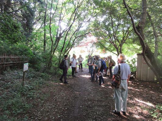 丸山城付近の探索してよこやまの道へ 黒川配水場の付近が丸山城と呼ばれており、物見や烽火台ではないかと思われます。