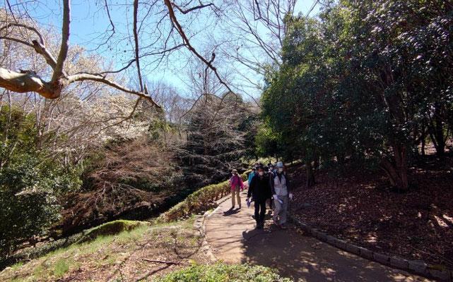 連光寺公園