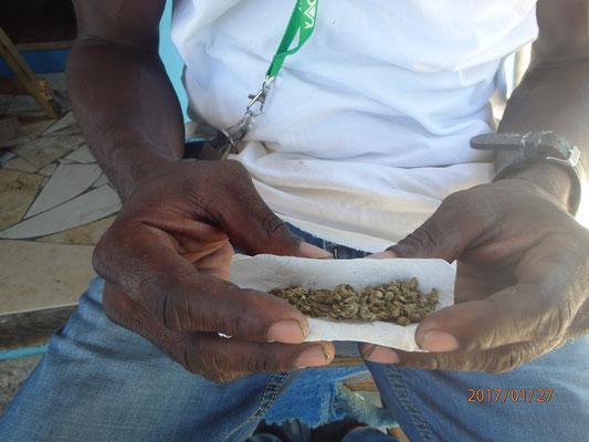 klar Jamaica