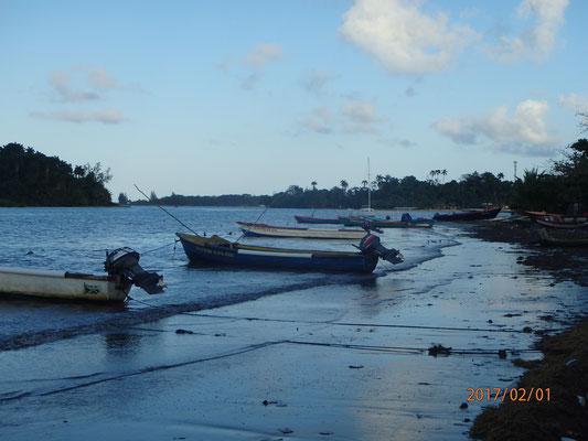 im Hafen von Port Antonio Jamaica