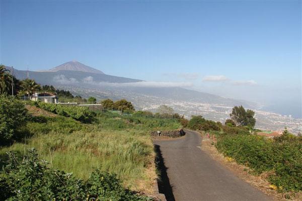 Umgebung Teidemar mit dem Teide im Hintergrund