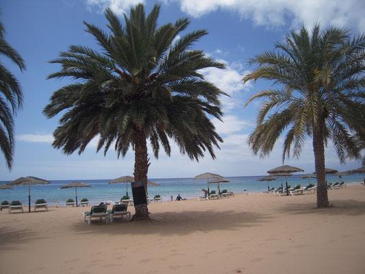 Las Teresitas unter Palmen