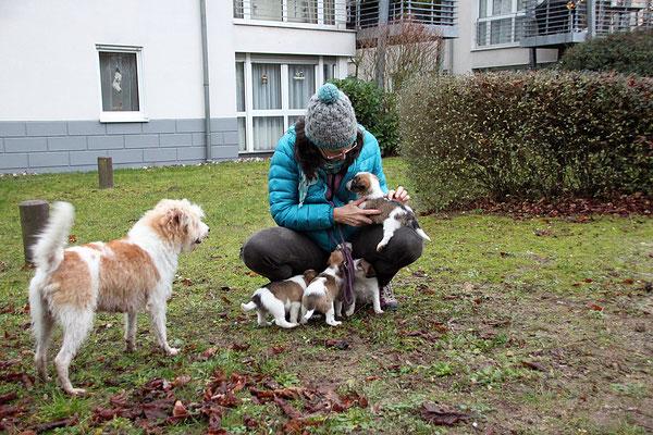 Gerhild mit Aila, Charlie, Carlo, Murmel & Cookie