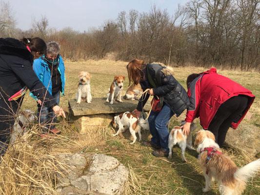 Vorbereitungen für's Gruppenfoto: Links: Amber - Oben: Nika, Anton, Ayko - Unten: Akira, Kabou, Cataleya, Benny