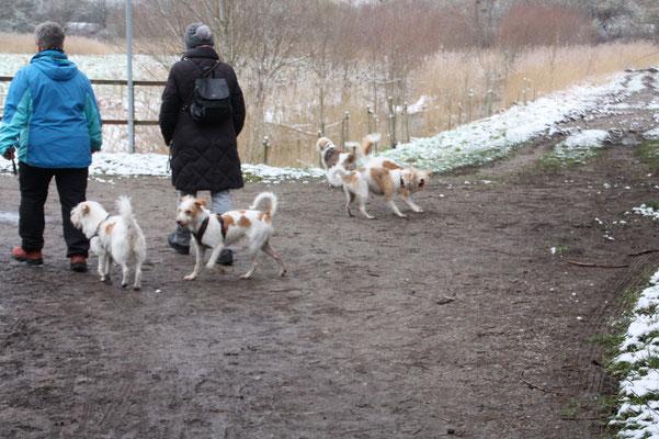 Bille, Amber, Nomi, Cataleya & Nika