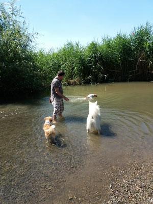 Ella, Fremdung & Cylie (schwimmt)