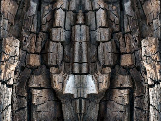 gespiegelte Holzstruktur