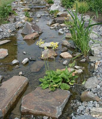 teiche - garten und stein ökologische gartengestaltung bremen, Garten ideen