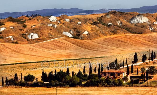 Delphicaphoto - Tuscany