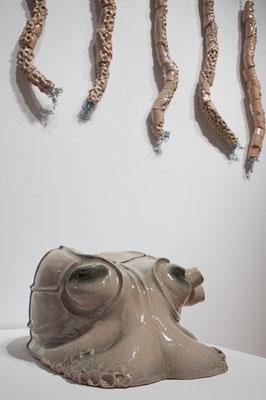 octupus © Juliane Leitner