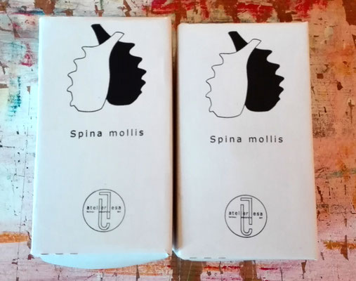 Spina mollis - Essig und Öl Gefäße / Spina mollis - vessels for vinegar and oil  © Juliane Leitner 2016