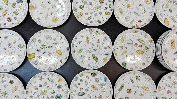 """Serie """"aequoreus"""" 20 Teller Brenntemp.: 1060°C; DM 24 cm  / Serie """"aequoreus"""" 20 plates; fired by 1060°C; diameter 24 cm © Juliane Leitner 2016"""