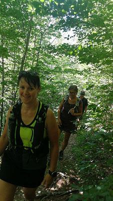 Im Schatten des Waldes lässt es sich auch bei Hitze gut wandern!