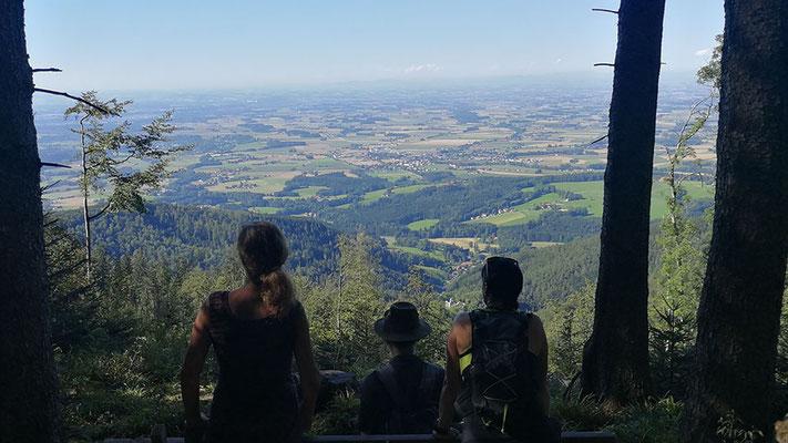 Aussichtsbank nach dem Perneckerkogel - Blick zur Seisenburg - Richtung Pettenbach
