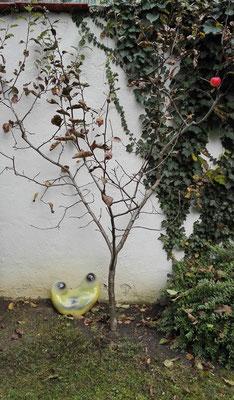 Der Wurm sieht nach den Apfel / the worm checks on the apple © Juliane Leitner 2016