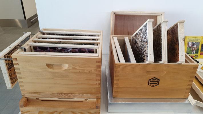 Maltataler Lehrbienenstand: Der bienenfreie Lehrbienenstock