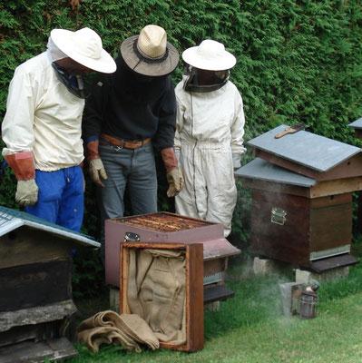 Endosser la combinaison d'apiculteur