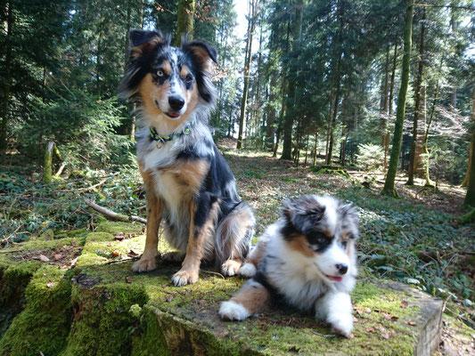 EVITA & YUMA