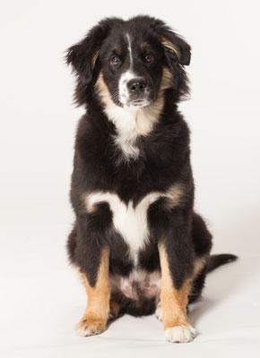 AIK 5 Monate alt