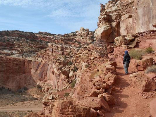 Trail zum Cassedy Arch