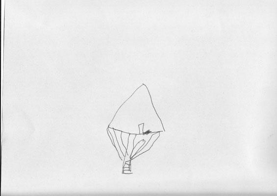 Décor Tente Sapin - Les Chemins de Traverse - Tom Rodriguez Martin