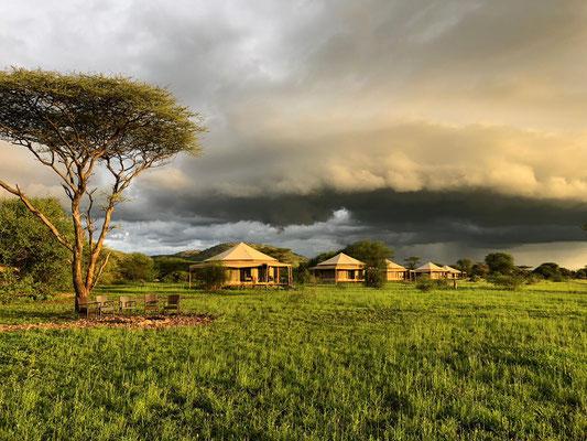 Sound of Silence Camp Serengeti