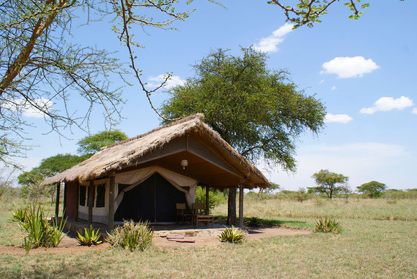 Whistling Thorn Tented Camp