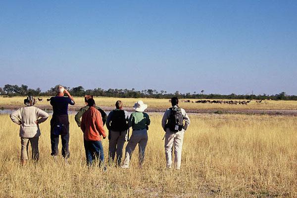 Buschwanderung Tansania Safari