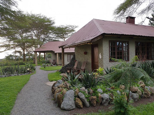 Hatari Lodge Tansania Safari