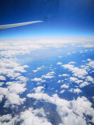 Flug mit KLM zur Kenia Safari