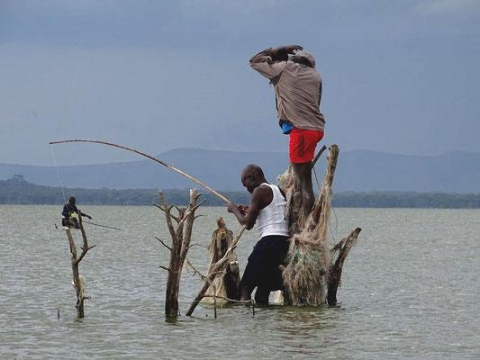 Fischer auf dem Lake Naivasha, Kenia Safari