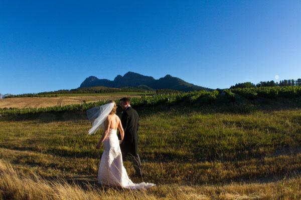 Flitterwochen Südafrika Backsberg