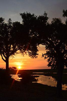 Sonnenuntergang Linyanti Botswana