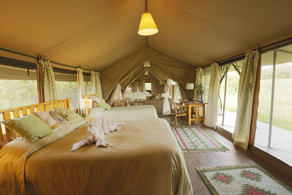 Porini Lion Camp Kenia