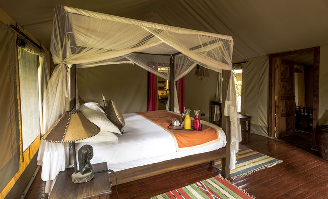 Ashnil Mara Camp, Kenia Safari